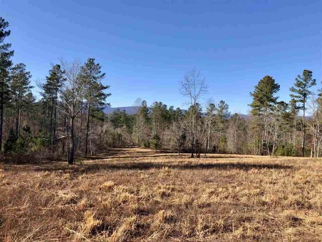 320 Buck Creek Lane, Rutherfordton, NC 28139 (MLS #47418) :: RE/MAX Journey