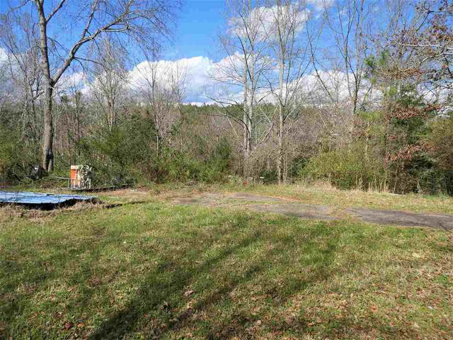 141 Song Sparrow Ct, Rutherfordton, NC 28139 (MLS #47625) :: RE/MAX Journey