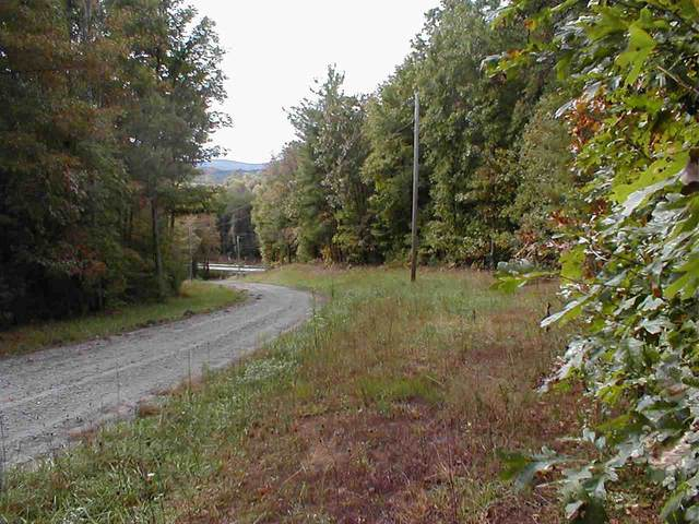 lot #13 Indian Forest, Bostic, NC 28018 (#47736) :: Robert Greene Real Estate, Inc.