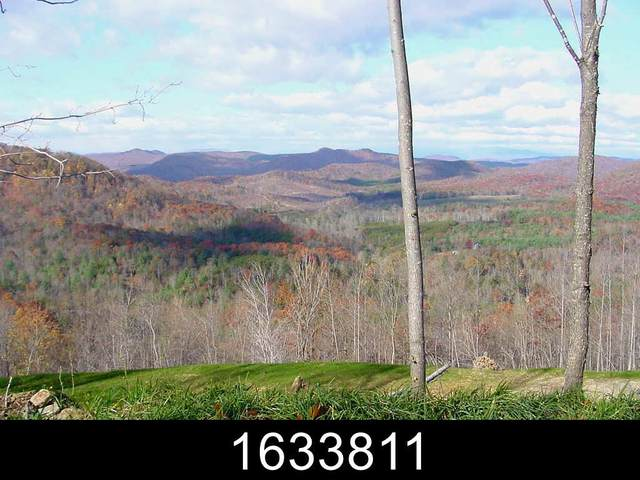 82 Mountain Lookout Dr, Bostic, NC 28018 (#47937) :: Robert Greene Real Estate, Inc.