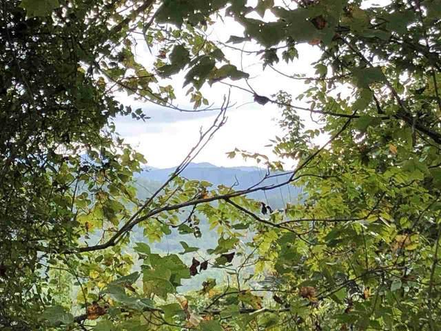 2874 Camp Creek, Union Mills, NC 28167 (#47985) :: Robert Greene Real Estate, Inc.