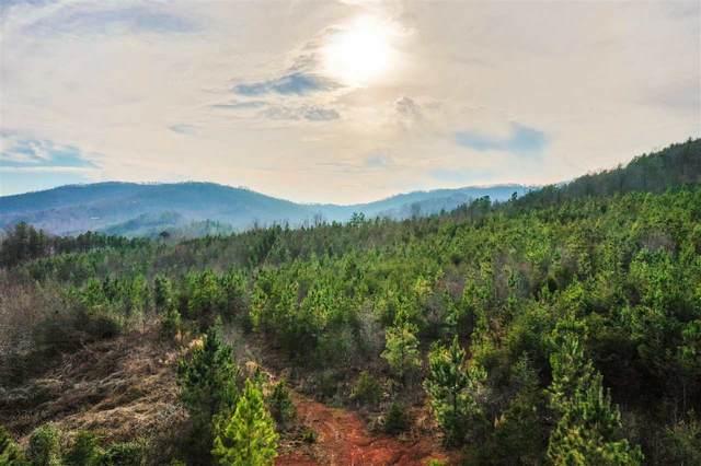 0 Luckadoo Mountain Rd, Bostic, NC 28018 (#48124) :: Robert Greene Real Estate, Inc.