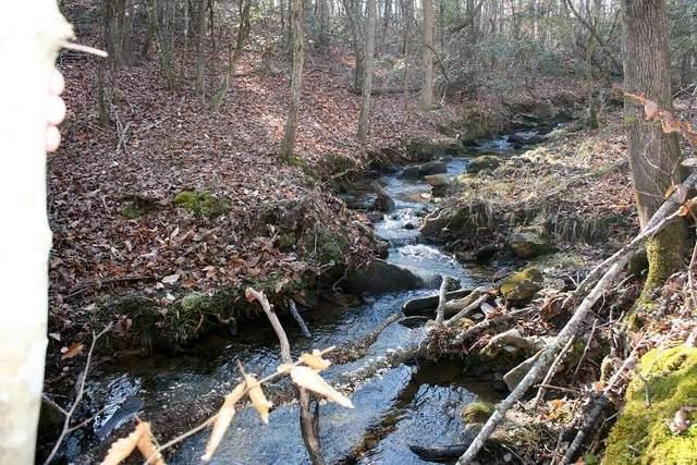 000 Hines Road, Mooresboro, NC 28114 (#48158) :: Robert Greene Real Estate, Inc.