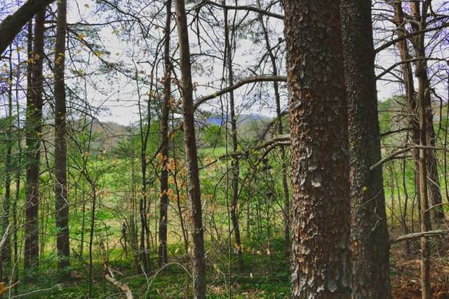 (Lot 87) Westridge Dr, Lake Lure, NC 28746 (MLS #48161) :: RE/MAX Journey