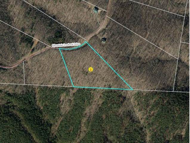 73 Mountain Lookout Dr, Bostic, NC 28018 (#48300) :: Robert Greene Real Estate, Inc.
