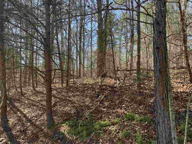 Line Dr - Lot #34, Forest City, NC 28043 (#48316) :: Robert Greene Real Estate, Inc.
