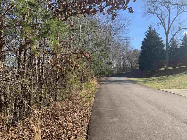 Line Dr - Lot #19, Forest City, NC 28043 (#48318) :: Robert Greene Real Estate, Inc.