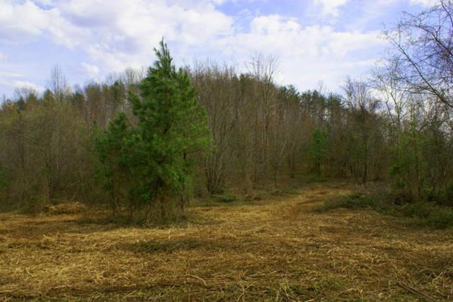 Lot 52 Cross Creek Dr, Rutherfordton, NC 28139 (MLS #44468) :: Washburn Real Estate