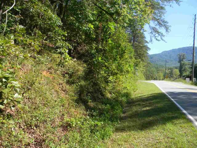 Lot 2 Bishop Lane, Mill Spring, NC 28756 (MLS #46971) :: RE/MAX Journey