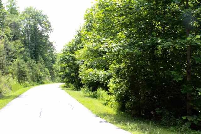 lot 133 Clearwater Creek, Rutherfordton, NC 28139 (MLS #44812) :: Washburn Real Estate