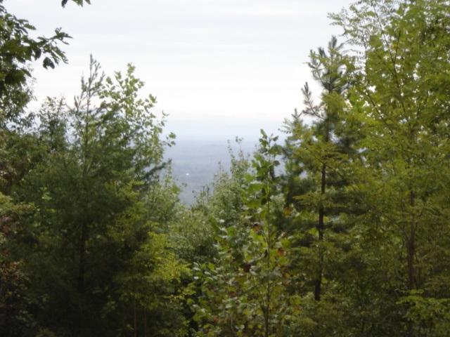 29 Mountain Lookout - Photo 1