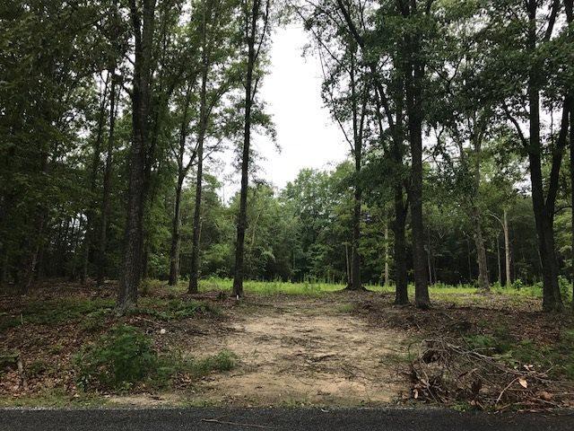 332 Chapman  Road, Forest City, NC 28043 (MLS #44838) :: Washburn Real Estate
