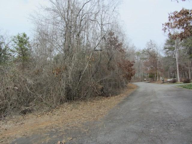 00 Moss Drive, Rutherfordton, NC 28139 (MLS #45358) :: RE/MAX Journey