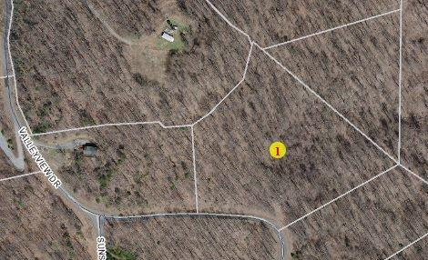 0 Valleyview Dr, Bostic, NC 28018 (MLS #45638) :: RE/MAX Journey