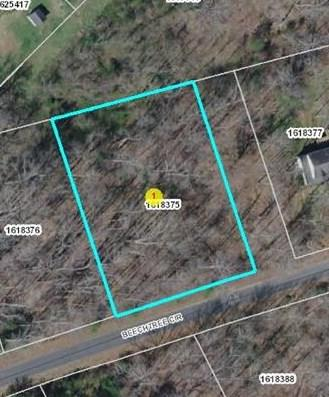 Lot 40 Beechtree Circle, Rutherfordton, NC 28139 (MLS #45693) :: RE/MAX Journey