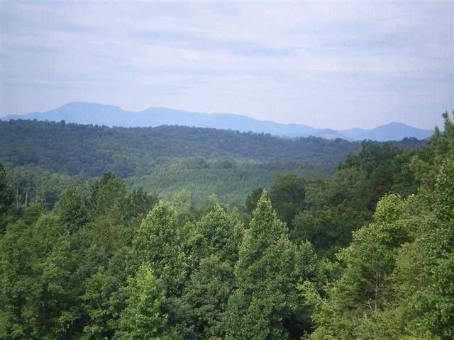 0 County Line Rd, Rutherfordton, NC 28139 (#47776) :: Robert Greene Real Estate, Inc.