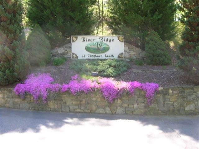 Lot# 75 River Ridge Parkway, Rutherfordton, NC 28139 (#48178) :: Robert Greene Real Estate, Inc.