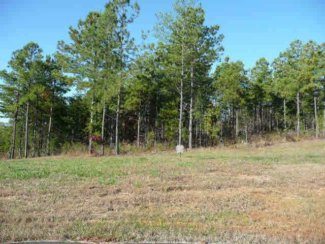 lot 2 Palisade Dr, Mill Spring, NC 28746 (MLS #48220) :: RE/MAX Journey