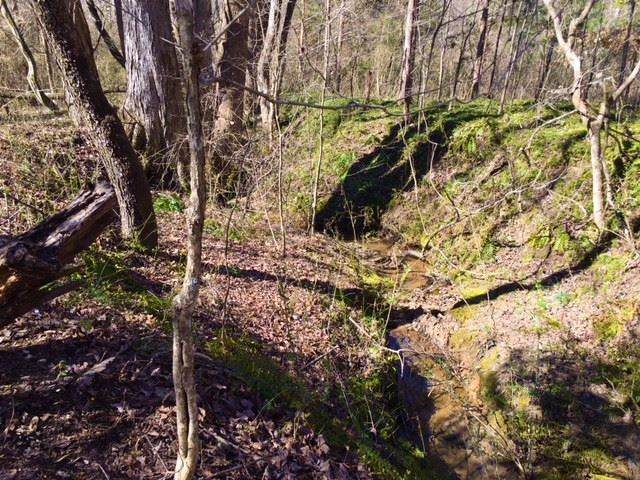 Lot 30 N Twin K Dr, Rutherfordton, NC 28139 (MLS #48269) :: RE/MAX Journey