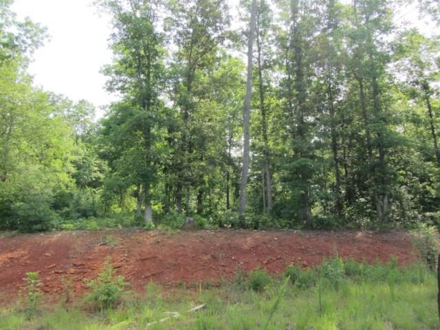 00 Magnolia Ridge, Ellenboro, NC 28040 (MLS #43664) :: RE/MAX Journey