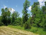 1 Clay Creek Dr - Photo 15
