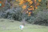 Lot 16 Hickory Valley Rd - Photo 25