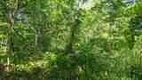 6841 Stony Creek - Photo 6