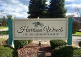 27562 Harrison Woods Lane - Photo 2