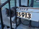 15913 Petoskey Ave - Photo 7