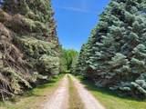 10423 Coolidge Rd - Photo 3