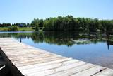 791 Blue Gill Lake Dr - Photo 9