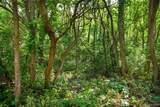000 Pine Tree Rd - Photo 31