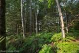 VL Tamarack Trails - Photo 2