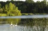 2670 Turtle Lake Dr - Photo 4