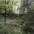 8045 Trail Ridge - Photo 3