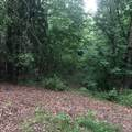 8045 Trail Ridge - Photo 8