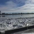 110 St Clair River Dr - Photo 61