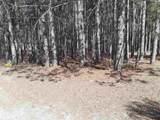 12380 Pine Mesa Dr - Photo 2