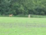0 Birch Run Rd. - Photo 2