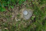 VL Oak Crest #2 Rd - Photo 3