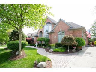 451 Springview Dr, Rochester, MI 48307 (MLS #217040864) :: The Peardon Team