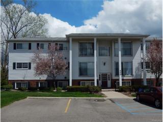 420 Baldwin Ave, Rochester, MI 48307 (MLS #217041403) :: The Peardon Team