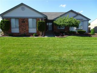 13921 Peterboro Dr, Sterling Heights, MI 48313 (MLS #217040419) :: The Peardon Team