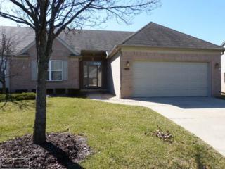 17234 Gulf Dr, Clinton Township, MI 48038 (MLS #31315833) :: The Peardon Team