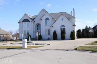 3086 Chinaberry, Sterling Heights, MI 48314 (MLS #31315849) :: The Peardon Team