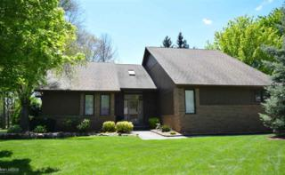 61821 Glenwood Trail, Washington, MI 48094 (MLS #31320248) :: The Peardon Team