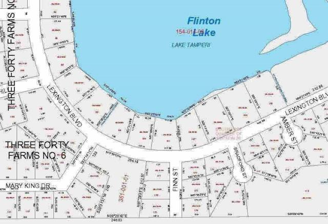 96 Lexington Blvd, Jackson, MI 49203 (MLS #20024495) :: The John Wentworth Group