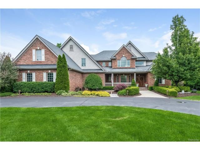 2729 Turning Leaf Dr, Howell, MI 48843 (MLS #217050298) :: The John Wentworth Group