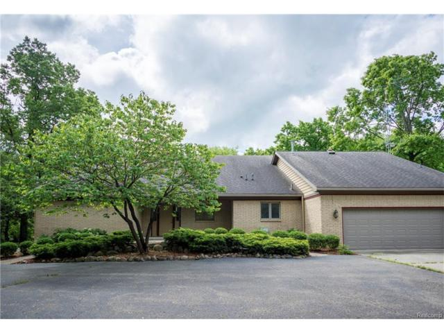 13530 Chateau Cove Dr, Holly, MI 48442 (MLS #217053194) :: The John Wentworth Group