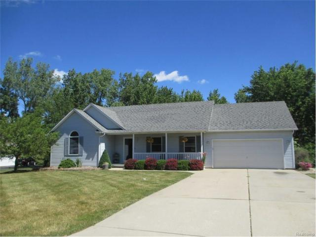 2460 Torrey Grove Crt, Fenton, MI 48430 (MLS #217053465) :: The John Wentworth Group